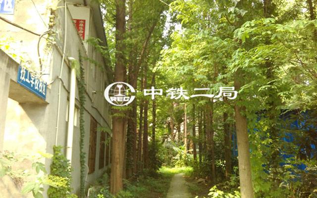校园环境一角